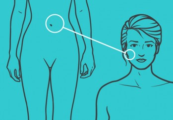 https://thefatexperts.com/wp-content/uploads/2015/03/abdomentoface-349x243.jpg